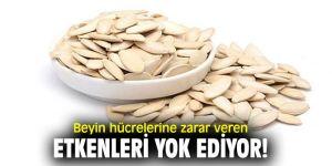 Dikkat! Bu besinler beyin hücrelerine zarar veren etkenleri yok ediyor!
