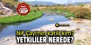 Nif Çayı'nın katili kim? Yetkililer nerede?