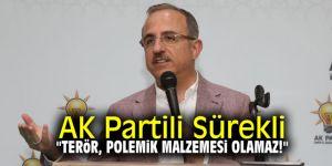 "AK Partili Sürekli, ""Terör, polemik malzemesi olamaz!"""