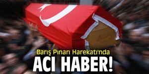 Barış Pınarı Harekatı'nda acı haber!