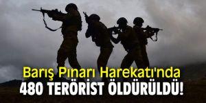 Barış Pınarı Harekatı'nda 480 terörist öldürüldü!