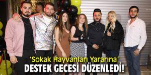 'Sokak Hayvanları Yararına' destek gecesi düzenledi!