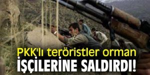 PKK'lı teröristler orman işçilerine saldırdı!