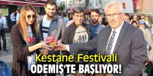 Kestane Festivali Ödemiş'te başlıyor!