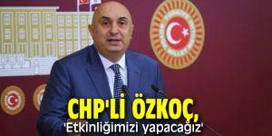 CHP'li Özkoç, 'Etkinliğimizi yapacağız'