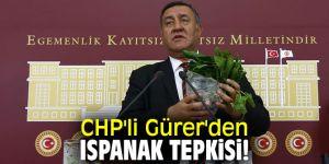 CHP'li Gürer'den Ispanak tepkisi!