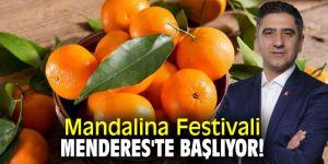 Mandalina Festivali Menderes'te başlıyor!