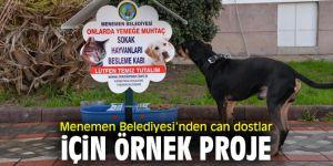 Menemen Belediyesi'nden sokak hayvanları için anlamlı davranış