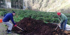 """""""Çay fabrikalarının çay atıkları, toprağın gıdasıdır."""""""