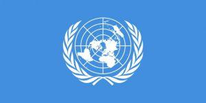 Birleşmiş Milletler'den Kuzey Kore kararı