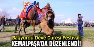 """""""Bağyurdu Deve Güreşi"""" festivali Kemalpaşa'da düzenlendi!"""