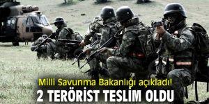 Milli Savunma Bakanlığı açıkladı! 2 terörist teslim oldu