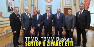 TFMD, TBMM Başkanı Şentop'u ziyaret etti