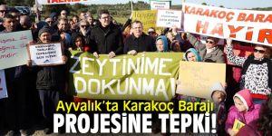Ayvalık'ta Karakoç Barajı projesine tepki!