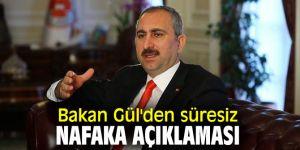 Bakan Gül'den flaş süresiz nafaka açıklaması