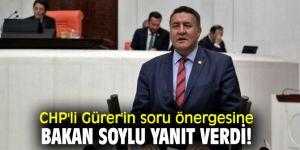 CHP'li Gürer'in soru önergesine Bakan Soylu yanıt verdi!