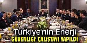 'Türkiye'nin Enerji Güvenliği' çalıştayında enerjide yerli imalat vurgulandı!