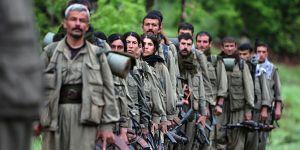 Yakalanan üst düzey PKK'lı yöneticinin kimliği belli oldu