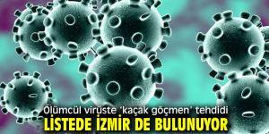 Ölümcül virüste 'kaçak göçmen' tehdidi! Listede İzmir de bulunuyor