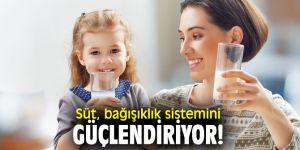 Süt, bağışıklık sistemini güçlendiriyor!