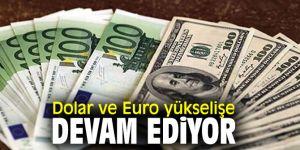 Dolar ve Euro'da yükseliş sürüyor
