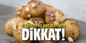 Filizlenmiş patateslere dikkat! Hasta yapabilir...