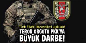 TSK açıkladı! Terör örgütü PKK'ya büyük darbe!