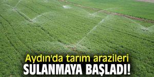 Aydın'da tarım arazileri sulanmaya başladı!