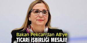 Ticaret Bakanı Pekcan'dan AB'ye ticari işbirliği mesajı!