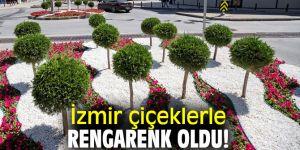 İzmir çiçeklerle rengarenk oldu!