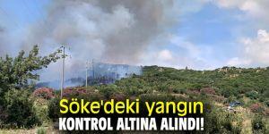 Söke'deki yangın Dilek Yarımadası'na sıçramadan kontrol altına alındı!