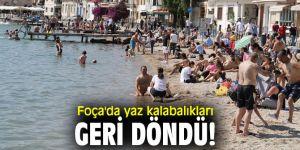 Foça'da yaz kalabalıkları başladı!