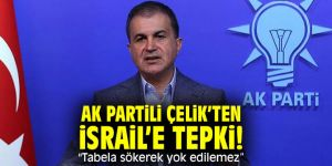 "AK Partili Çelik'ten İsrail'e tepki! ""Tabela sökerek yok edilemez"""