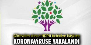 HDP'li belediye başkanı koronavirüse yakalandı