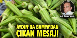 Aydın'da Bamya'dan Çıkan Mesaj!