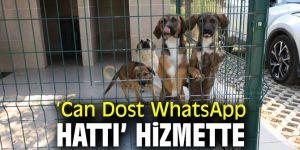 'Can Dost WhatsApp Hattı' Hizmete girdi!