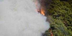 Manisa'daki orman yangınında çalışmalar sürüyor!