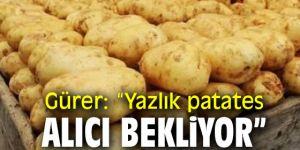 Mısır'dan ithal edilen patatesler tohumluk değilmiş