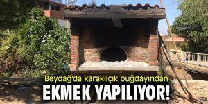 Beydağ'da Karakılçık Buğdayından Ekmek yapılıyor!