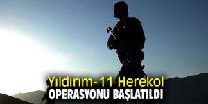 Yıldırım-11 Herekol Operasyonu başlatıldı