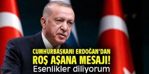 Cumhurbaşkanı Erdoğan'dan Roş Aşana mesajı! Esenlikler diliyorum