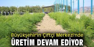 Büyükşehir'in Çiftçi Merkezi'nde Üretim Devam Ediyor