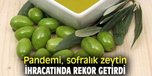 Türk ihracatçısı küçük ambalajlarda zeytin ihracatına yoğunlaştı