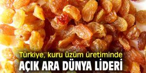 Türkiye, kuru üzüm üretiminde lider!
