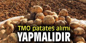 TMO patates alımı yapmalıdır