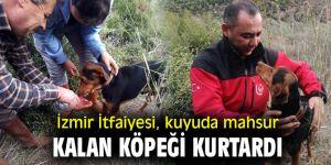 İzmir İtfaiyesi, av köpeğini kurtardı