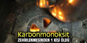 Karbonmonoksit zehirlenmesinden 1kişi öldü