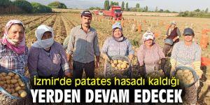 İzmir'de patates üreticisi ürününü kış sonuna saklıyor