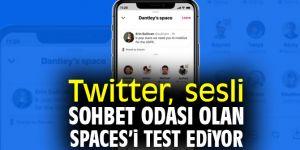 Twitter Spaces, sınırlı kullanıcıyla test ediliyor