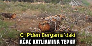 CHP'den Bergama'daki ağaç katliamına tepki!